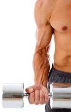 Cardio Workout Routine, Weightlifting Workout Routines, Weight Training System