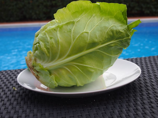 Pointed or Sweetheart Cabbage Calories