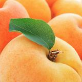 Calories in Apricots