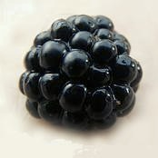 Health Benefits of Blackberries and Nutrition