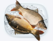 Calories in Carp Fish, Carp Nutrition Facts
