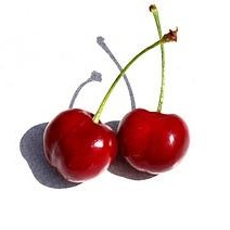 Calories in Cherries