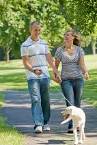 Get Paid to Lose Weight. Dog Walking is an Easy Exercise Routine, Which Can Help You to Lose Weight Fast Easy