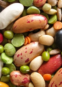 Fat Burning Foods: Legumes
