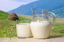 Calories in Goat Milk