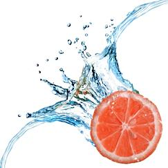 Grapefruit contains a flavonoid called naringenin and is believed to