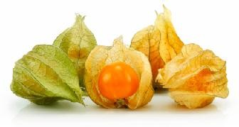 Ground Cherries Nutrition Facts, Health Benefits of Ground Cherries