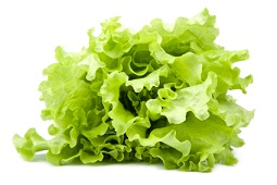 Lettuce Calories