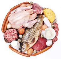 Low Fat High Protein Diet and Foods