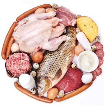 Low Fat High Protein Diet