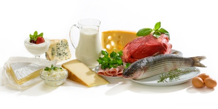 Foods With Protein, Daily Protein Requirement, Protein Benefits