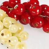 Calories in Red and White Currants