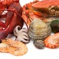 Good Sources of Protein, Food Sources of Protein