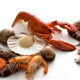 Calories in Seafood