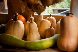 Calories in Squash, Summer Squash Calories, Winter Squash Calories