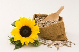 Calories in Sunflower Seeds and Nutrition Facts