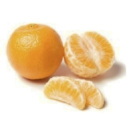 Calories in a Tangerine
