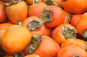 Persimmon Nutrition Facts, Health Benefits of Persimmons