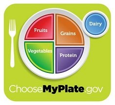 Balanced Healthy Diet, Balanced Plate, Healthy Plate, Healthy Eating Plate