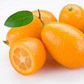Calories in a Kumquat