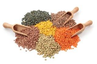 Vegetarian High Protein Diet