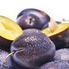 Calories in Plums and Prunes