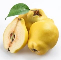 Quince Fruit Nutrition Facts, Health Benefits of Quinces