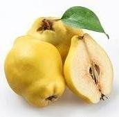 calories in quinces