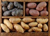 Calories in Potatoes Raw