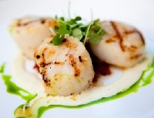 Calories in Scallops, Scallop Calories, Scallop Nutrition Facts