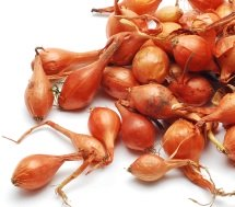 Calories in Shallots
