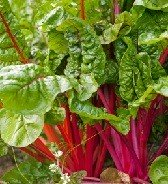 Calories in Swiss Chard